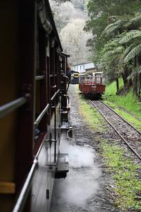 墨尔本小火车进站