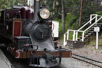 墨尔本小火车头