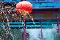 屋顶下悬挂着一盏红色的灯笼