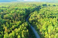 大兴安岭森林公路风景