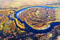 航拍金色树林蓝色河流