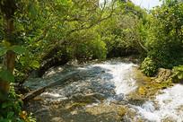 黔南小七孔-响水河-石上森林