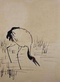 徐悲鸿花鸟飞禽册 -喝水的鹤