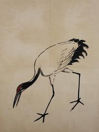 徐悲鸿花鸟飞禽册-低头的仙鹤