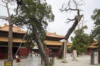 曲阜孔庙古建筑-十三碑亭