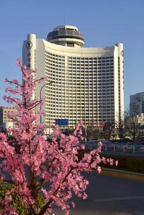 北京国际饭店和桃花装饰