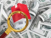放大镜下的美元和红房子