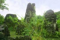 贵州天星桥-天星盆景区风景