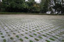 混凝土植草砖停车场