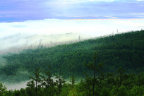 大兴安岭山峦树林晨雾