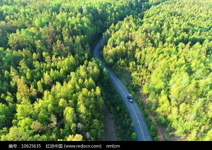 大兴安岭林区林海公路 图片