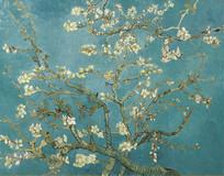 梵高油画开花的巴旦杏树枝