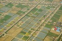 航拍上海浦东郊外的田野