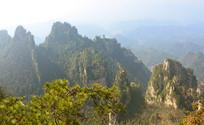 杨家界石英砂岩峰林山峰俯拍