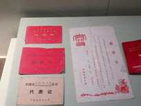 平湖县代表证