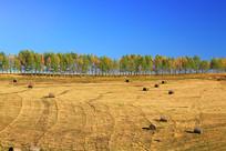 内蒙古秋季田园风光