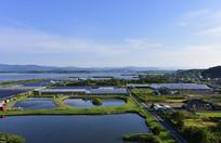 日本大阪的田园水利景色