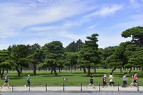 日本皇居外苑跑步的人