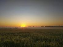 日出薄雾村庄