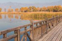 北京野鸭湖湿地公园的秋天景色