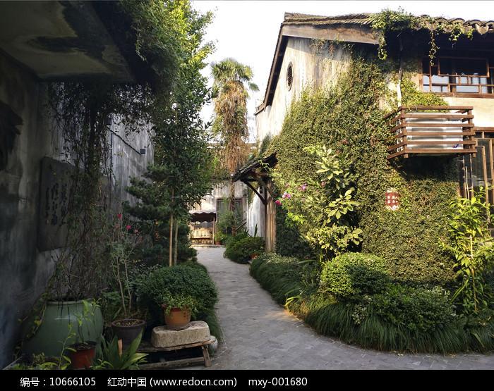绿意庭院图片