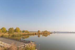 湿地公园秋景