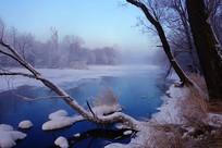 雪域冰河雾凇风景