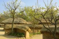 朝鲜半岛传统民居及庭院