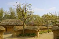 韩国民俗村传统民居及庭院