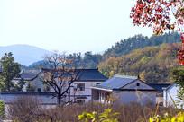小山村的秋天