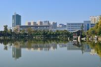 湖边的高楼大厦风光图片