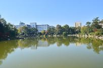 湖泊树木倒影风景图片