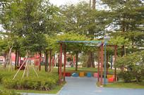 公园绿化树木
