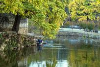 村前池塘与水岸
