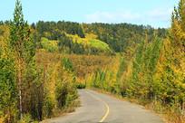 大兴安岭秋季森林平坦的公路