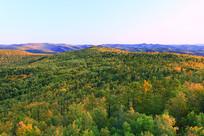 大兴安岭原始森林秋季风光