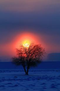 冬季雪原日出朝阳