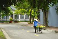 海阳省街道卖水果的越南妇女