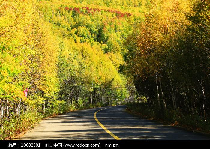 金秋彩林山路风景图片