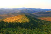 金秋山峦五彩林风景