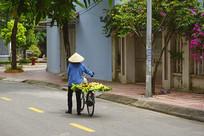 推自行车卖水果的越南妇女商贩