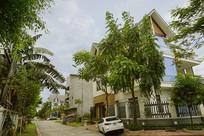 越南海阳市城市街道