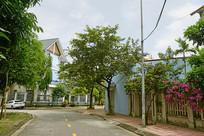 越南海阳市街道及民居