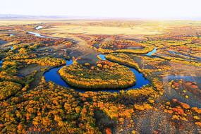 航拍秋季扎敦河茂密丛林