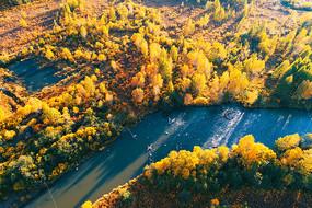 航拍茂密树林河湾秋色