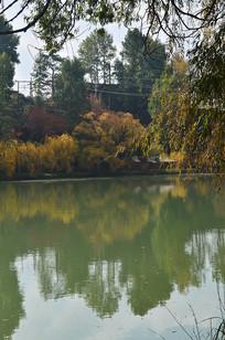湖边树木秋色