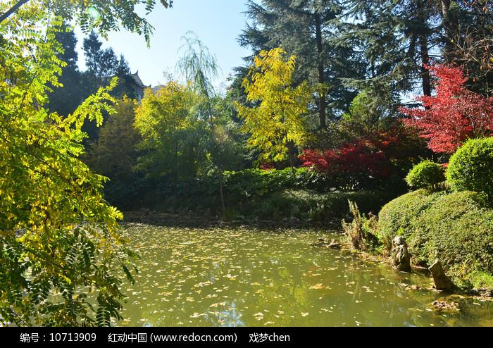 湖泊绿色风景图片