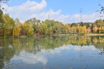 秋天的湖泊风景