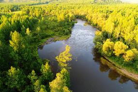 森林河湾秋色