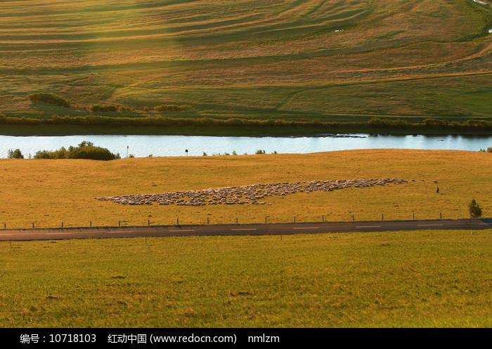 草原黄昏时的河岸羊群图片
